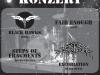 Newcomer Konzert 2007